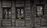 04_Peter Guspan_ Za oknami