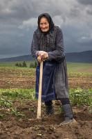 babka-z-vychodnej