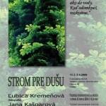 LubkaStrom