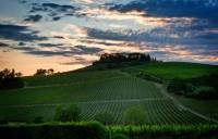 © Ľubica Kremeňová - Súmrak nad vinicami (Chianti)