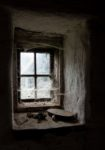 Ľubica Kremeňová - Na okne v maštali