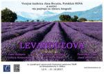 Pozvánka Levanduľová