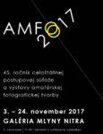 AMFO2017